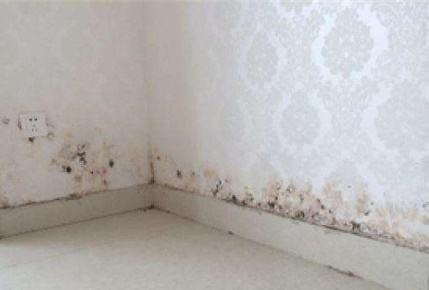 墙皮脱落的原因与处理方法